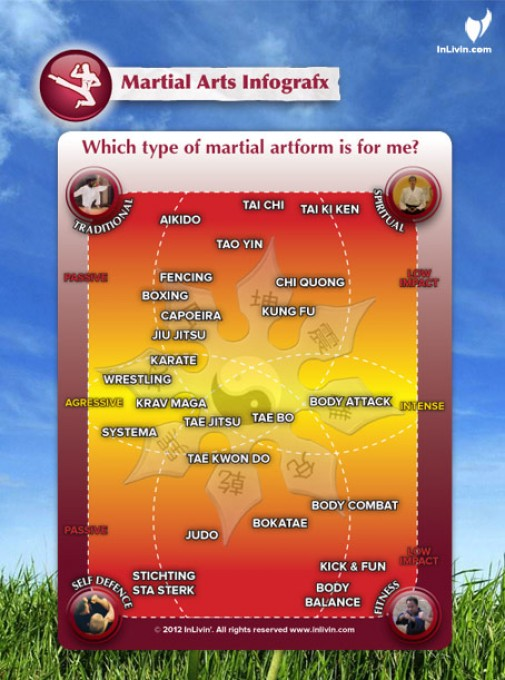 What Martial Art Is Right For Me Martial Arts Infographx