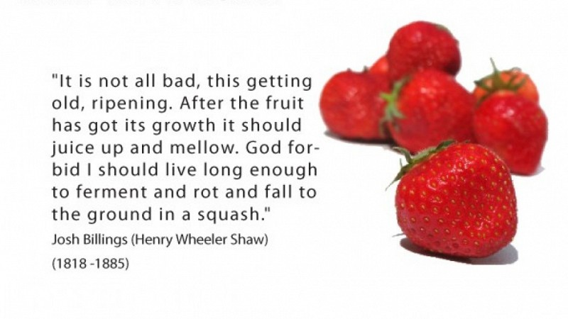 Henry Wheeler Shaw On Ripening In Old Age